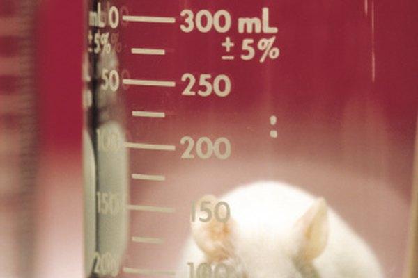 Las pruebas en animales tienen aspectos positivos y negativos.