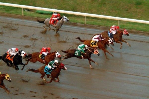 Gana la Triple Corona creando tu propio juego de mesa de carreras de caballos.