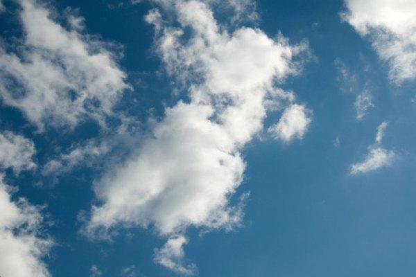 El aire es una parte importante del ciclo de la vida.