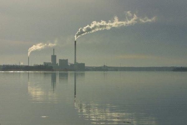Las fábricas emiten dióxido de carbono en la atmósfera, frenando el crecimiento de las plantas.