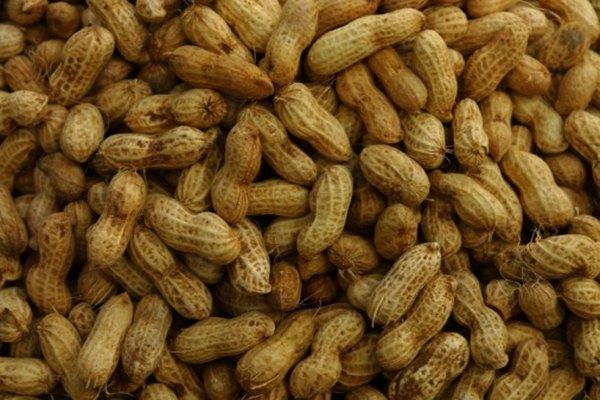 Los cacahuetes son una leguminosa importante.