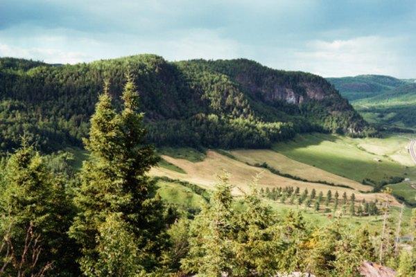 El valle es una región particularmente fértil de California.