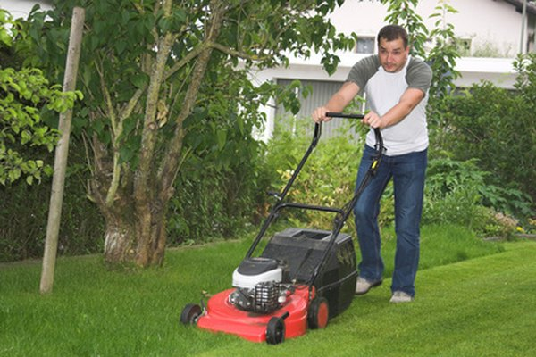 LCT engines are used in a variety of garden equipment