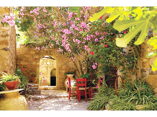 Most herbs are water-sparing and create fragrance and texture in a Mediterrarnean garden.