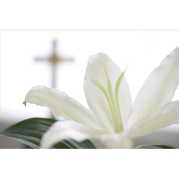 Ideas For Decorating A Catholic Church For The Season Synonym