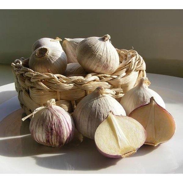 Preserve Garlic in Olive Oil