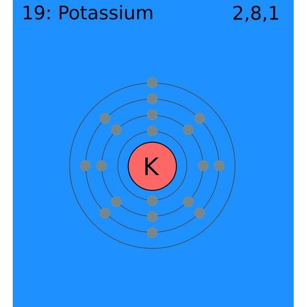 What Is a Normal Potassium Level?