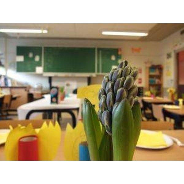 Classroom Decoration Ideas Fort Worth : Classroom decorating ideas synonym