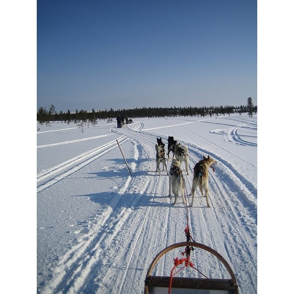 The Iditarod has been called
