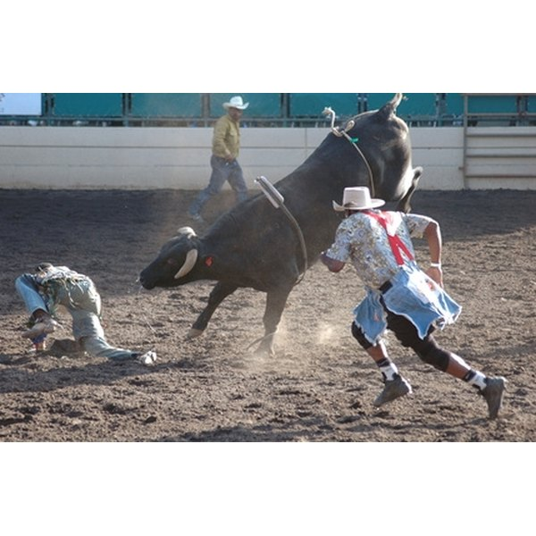 Bull riding is a popular rodeo attraction.