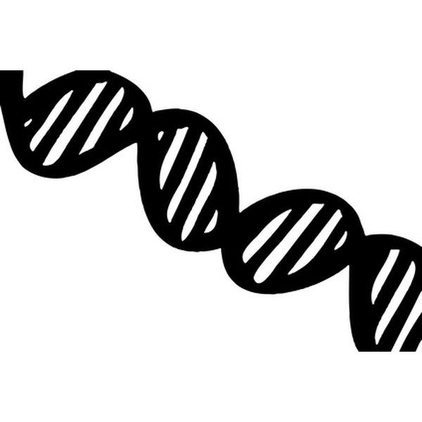 biological research paper vegas shooting