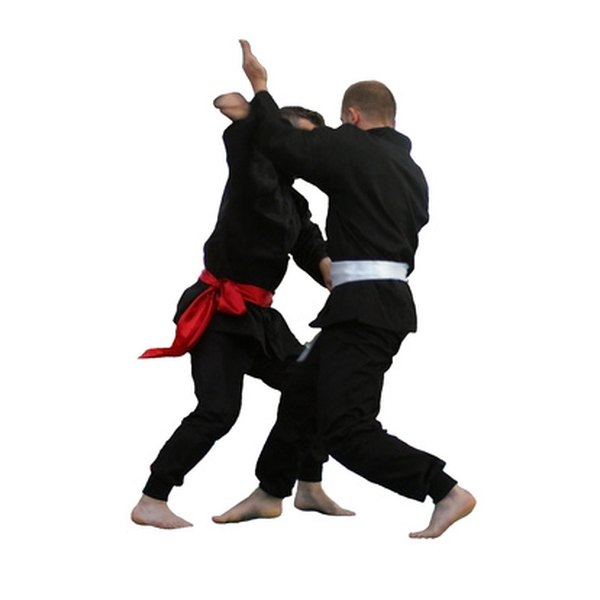 Ninjutsu is one of the most effective fighting systems.