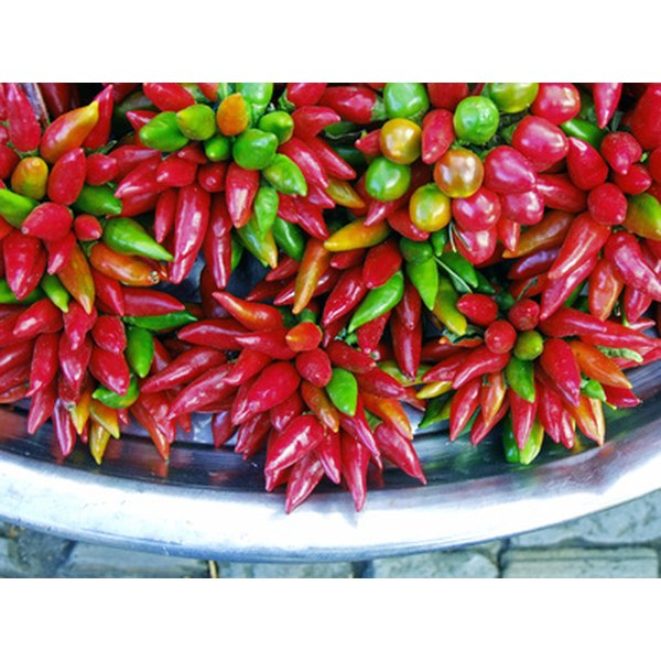 Paprika comes from dried peppers.