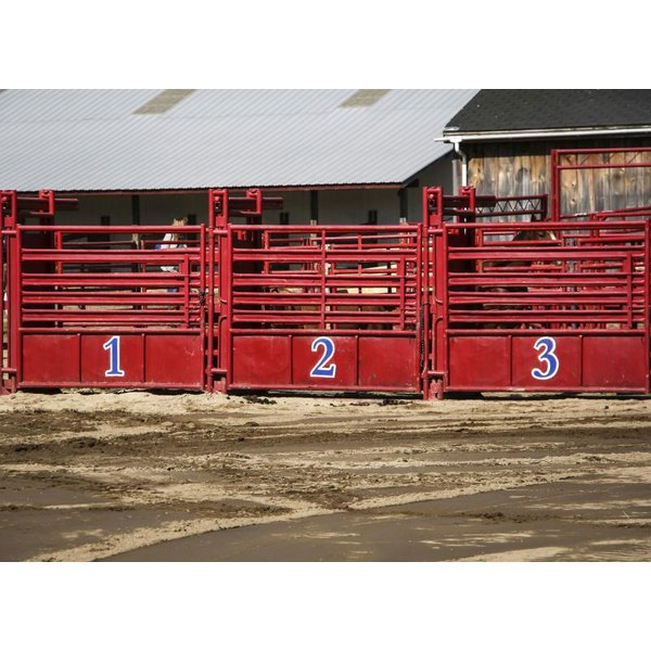 Three roping boxes in a rodeo arena.