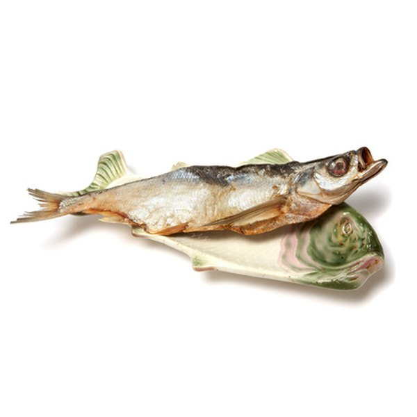 Fish oil is extracted from the bodies of fish.