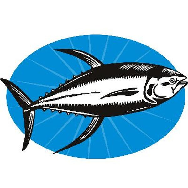 Cold water fish, such as tuna, are rich sources of omega-3 fatty acids.
