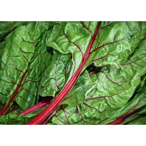 Swiss chard is an excellent source of magnesium.