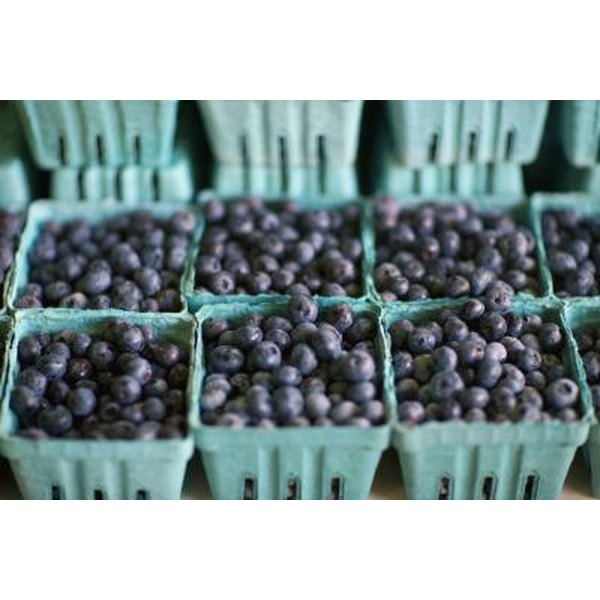 Blueberries for sale at a market.