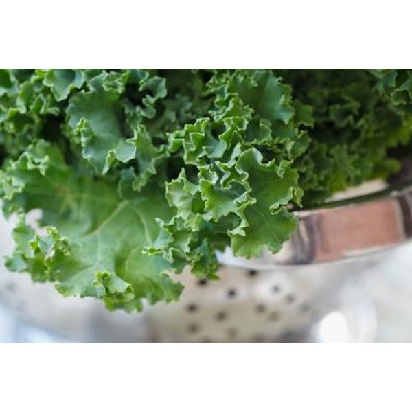 Fresh kale in a strainer.