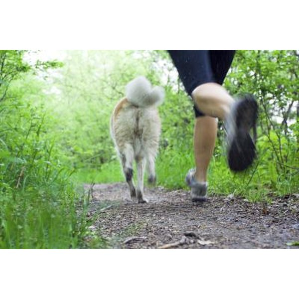 A woman jogs on a lush trail with a dog.
