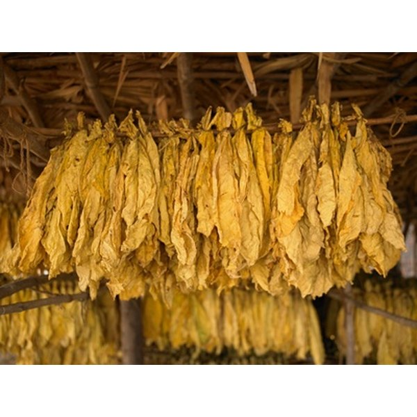Tobacco is used as a base note in Creed Tabarome Millesime.
