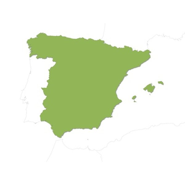 Spain's rich history and cultural regions provide a wide assortment of foods.