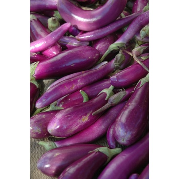 Different Names for Eggplant