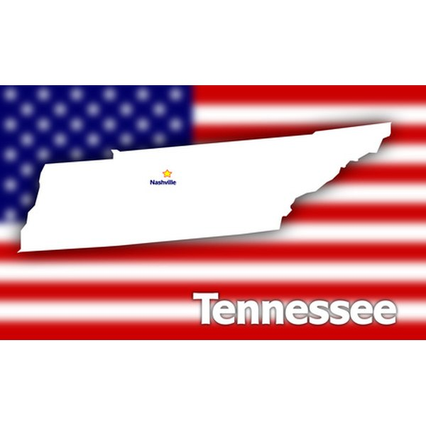 Daycare regulations in Tennessee are established by the Department of Human Services.