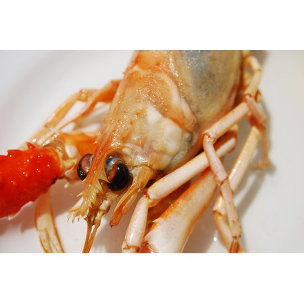 Raw shrimp is rich in protein and vitamins A, D and E.