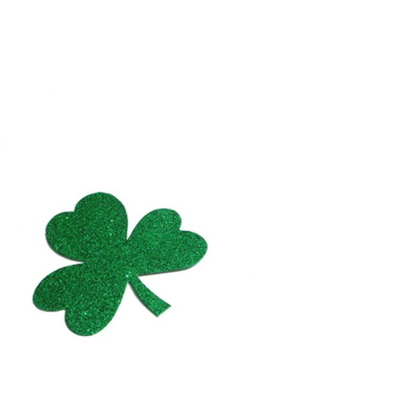 Shamrocks are belived to bring good luck.