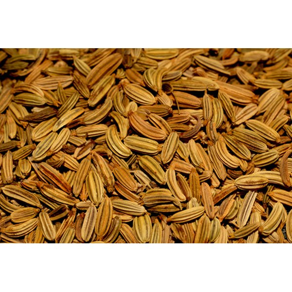 Fennel seed adds distinctive flavor to foods.