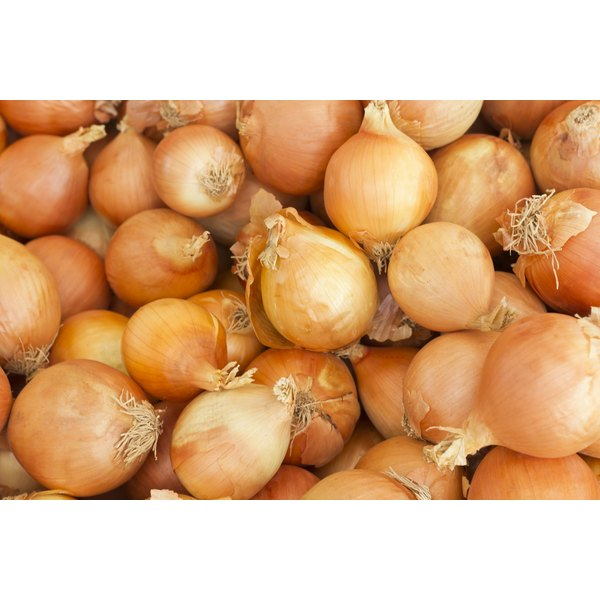 Yellow onions, which is a top source for flavonols.
