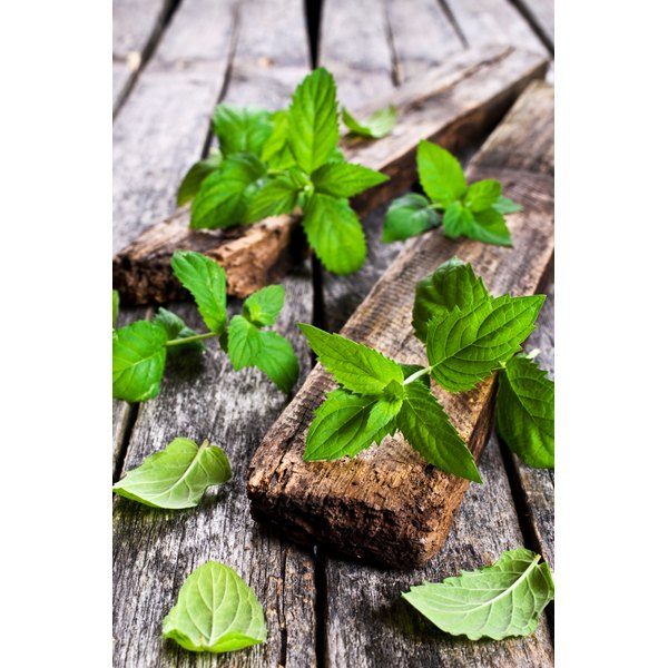 Peppermint essential oil might alleviate pain and inflammation associated with rheumatoid arthritis.