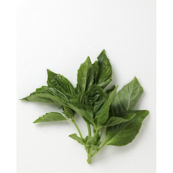 Herbs like basil can be frozen and used later in cooking.