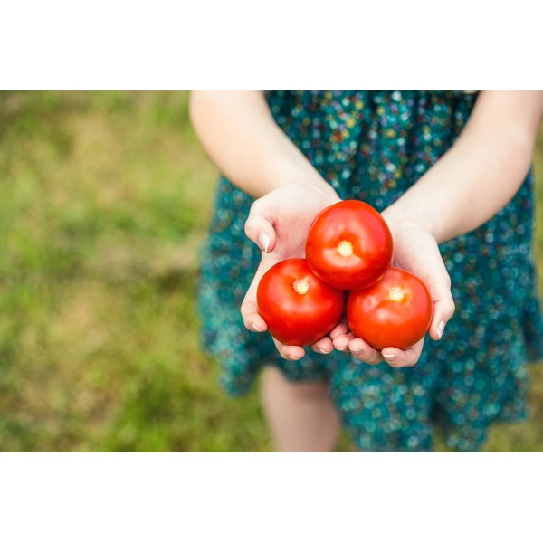 woman holding three tomatoes