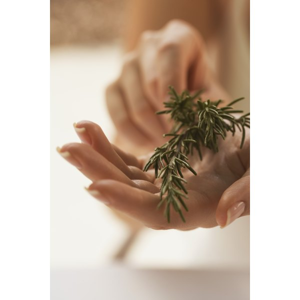 Steeped into tea or added to a shampoo base, herbs like rosemary give your scalp a pick-me-up.