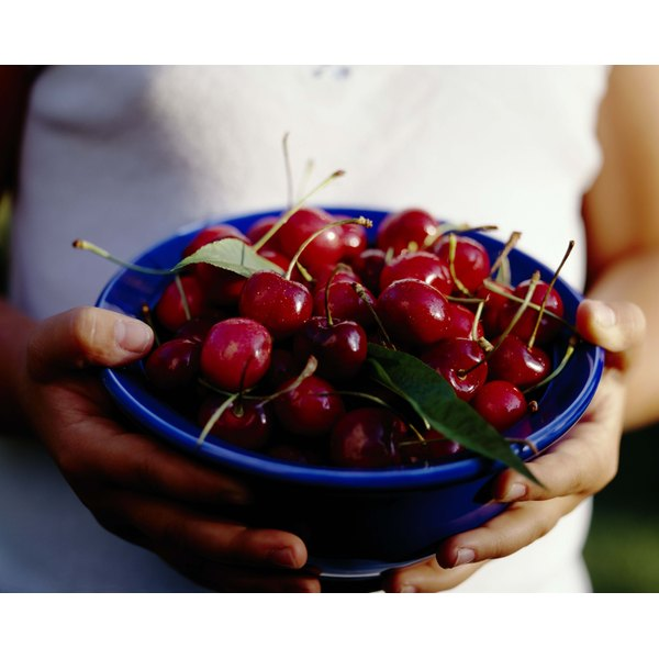 Woman holding a bowl of bing cherries.