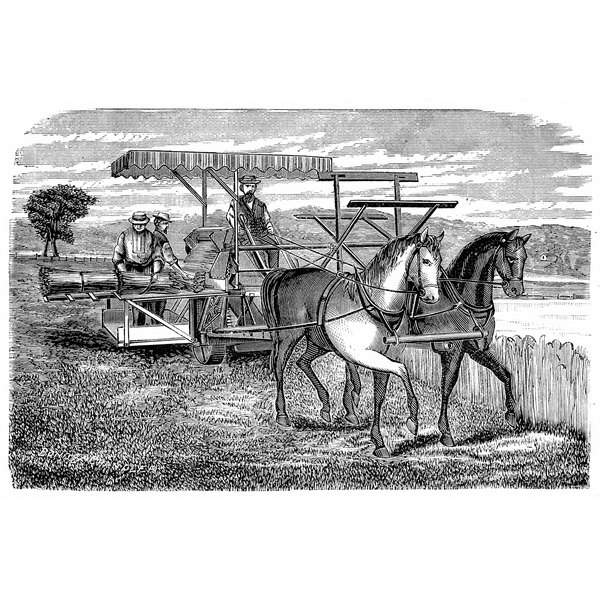 1800 S Colonial Scene On Demand: During The Early 1800s, Most Americans Earned Their Living As What?