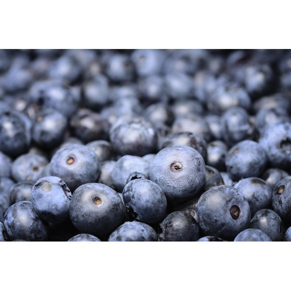 A close-up of fresh blueberries.