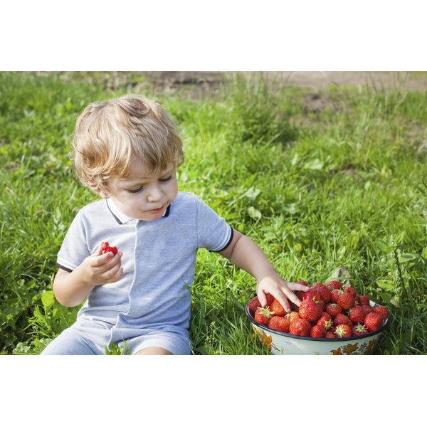 A toddler eating iron-rich strawberries outside.
