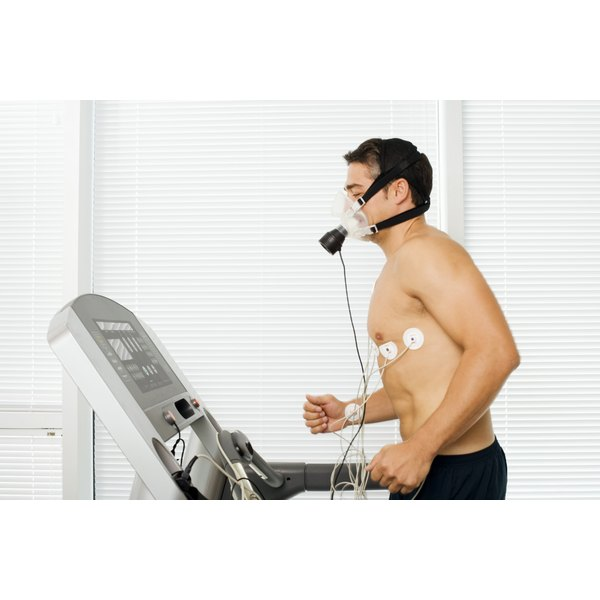 Your heart rate and blood flow increase with exercise.