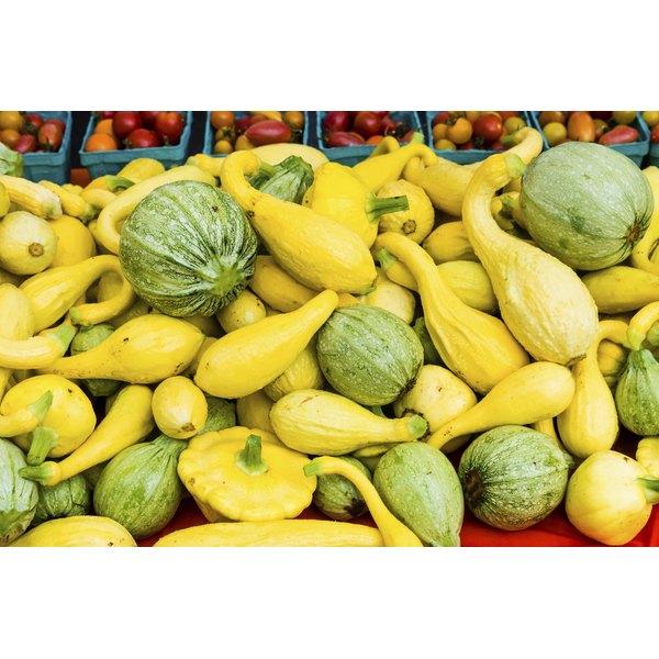 Yellow squash at farmer's market.