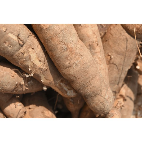 Cassava's for sale in the market.