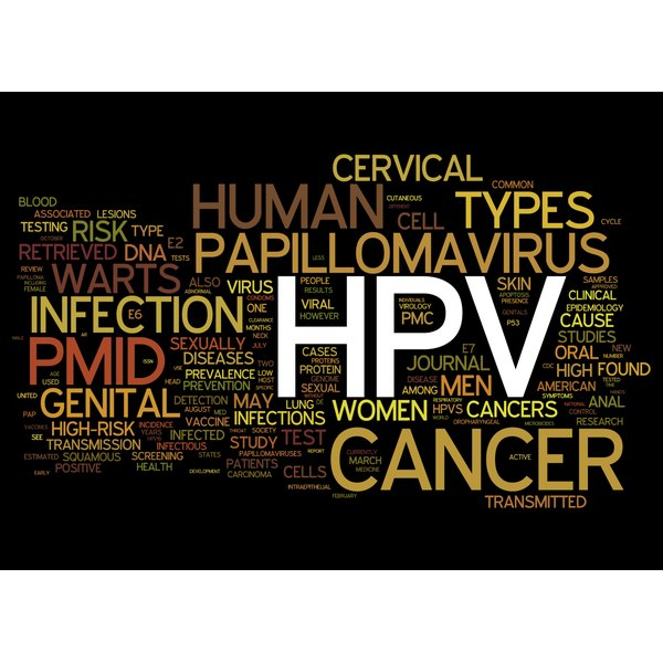 HPV related concepts.