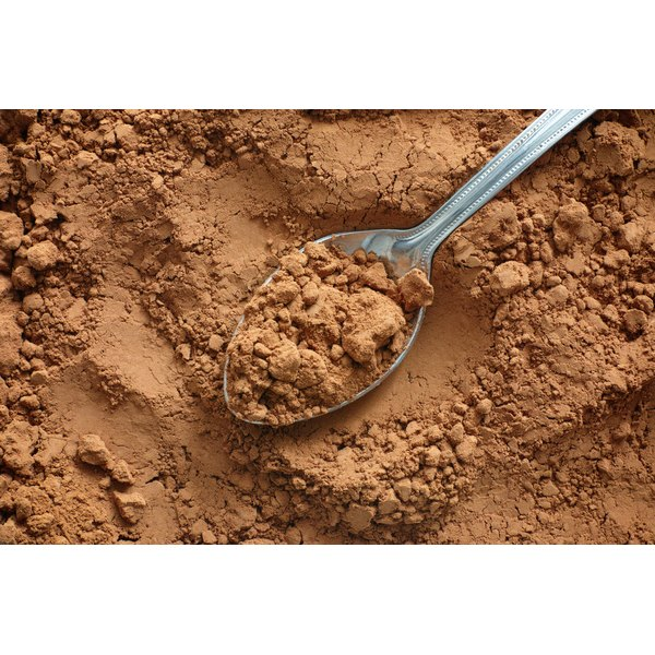 A close-up of a spoon with raw cocoa powder.