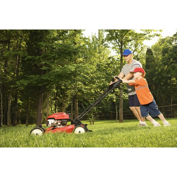A man and his son are pushing a lawn mower.