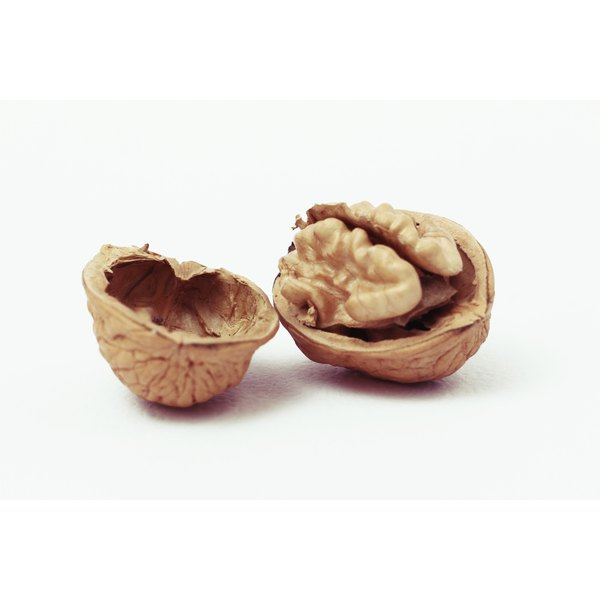 A cracked open walnut.