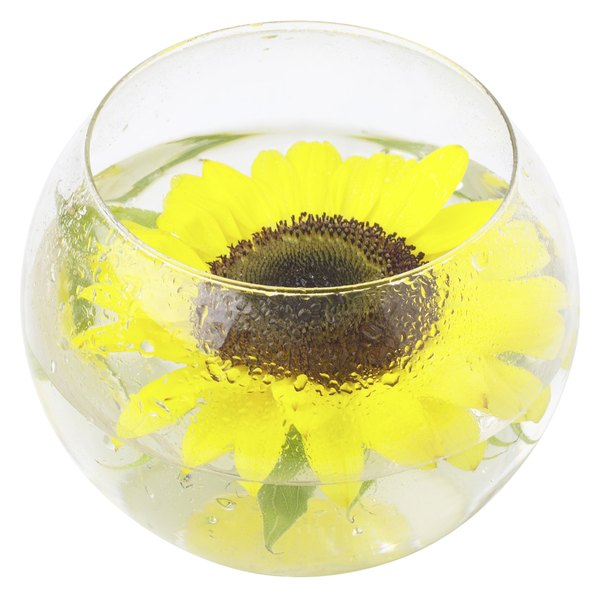 Float a sunflower bloom in a clear glass bowl for an attractive centerpiece.