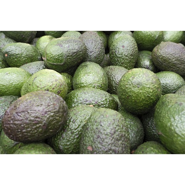 Avocados for sale at a market.