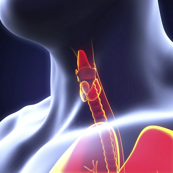 Thyroid disorders can cause swelling around the neck.